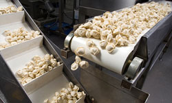 Using our state of the art oven, we monitor our curing rubber coated rollers to ensure there is no risk of bacteria problems.
